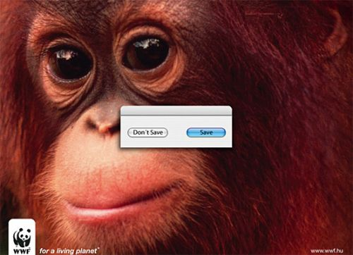 WWF Photoshop - Save oder Don't Save?
